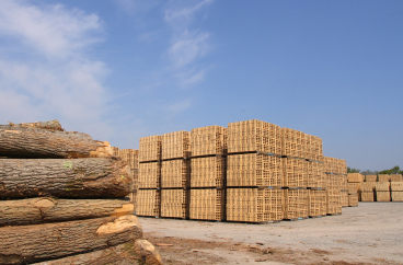 Wooden packing crates production